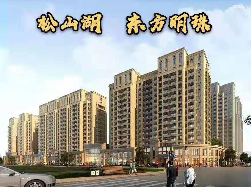 大朗 6栋村委统建楼【东方明珠】高端品质 户型方正 带停车场
